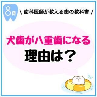 【犬歯が八重歯になる理由は?】